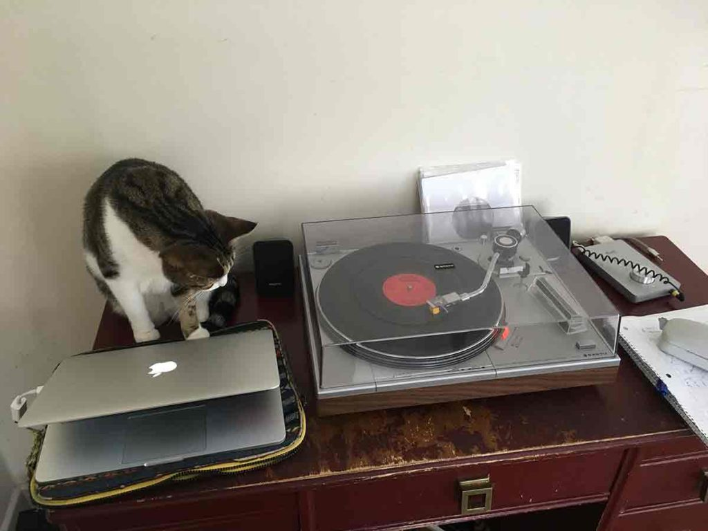 Gio on the turntable